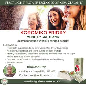 Soul to Sole - Koromiko Friday gathering